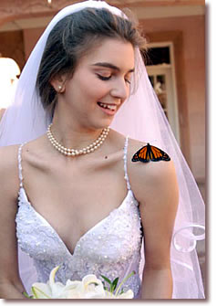 Butterfly on Bride's Shoulder